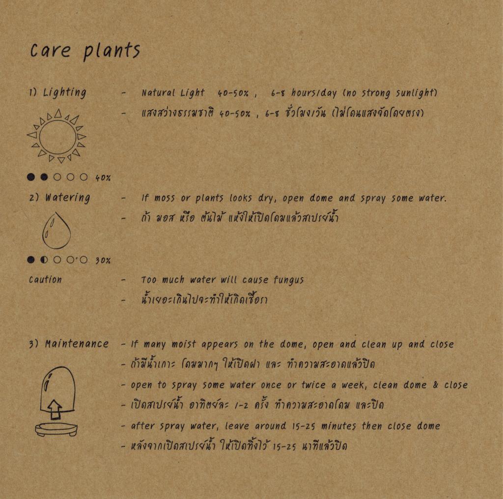 Care Plant